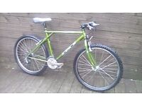 ADULT GT TIMBERLINE MOUNTAIN BIKE WITH 21 GEARS AND 18 INCH FRAME