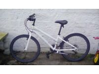 Ladies/girls dawes bike