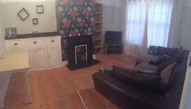 Spacious double room, freshly renovated house, fibre optic broadband