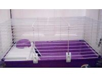 Guinea Pig/Rabbit/Elderly rat cage