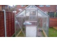 8ft by 6ft glass greenhouse