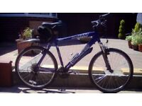 Specialized 24 Speed Gents Mountain Bike good condition.
