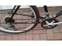 Rover 302 Mountain Bike
