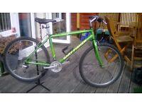 Gary Fisher mtn bike