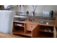 Modern glass and wood sideboard