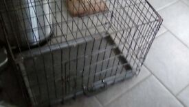 Cat/puppy pen