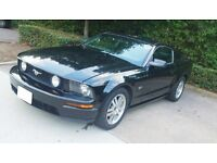 Ford Mustang GT V8 MY05