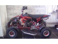 49cc mini moto quad