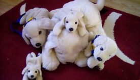 Plush Andrex dogs.