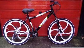 Eigerclimber bicycle