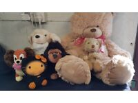 Selection of plush soft toys - bears, monkeys, dogs, hello kitty - Childrens / collectable / dog