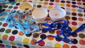 Puppy bowls and leads