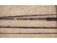 Quicksilver match rod 13ft,3.90m