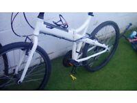 Tern joe 21 fold up bike