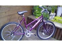 LADIES FALCON ORCHID MOUNTAIN BIKE WITH 18 GEARS