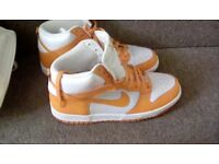 Nike hi tops brand new never worn adult size 8