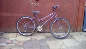 ladys universal bike