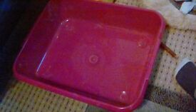 X2 large litter trays. £10