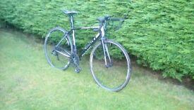 Giant mens road bike