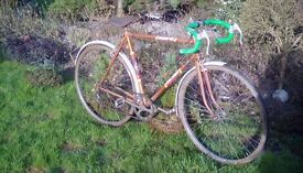 Raleigh Scorpio gents 5 speed bicycle