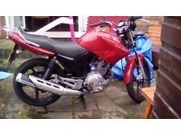 Yamaha ybr 125. Low mileage. 12months mot. Full service history. Heated grips. Ready to ride away.