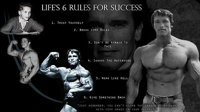 Arnold Schwarzenegger Olympia Bodybuilding Motivational Poster 24 Inch X 13 Inch