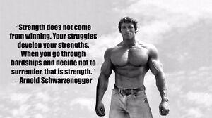 Arnold Schwarzenegger - Bodybuilder Olympia  Silk Cloth Poster 24 x 13