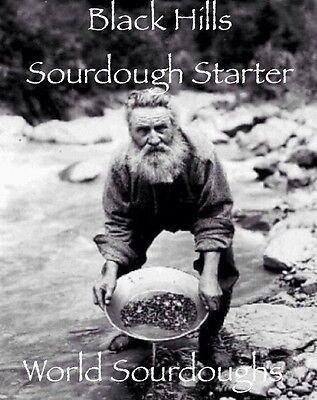 HISTORIC  Black Hills Sourdough Starter, 140 Year-Old History