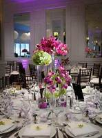Wedding Decor or DIY rentals, chair covers, table cloth