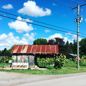 """""""R"""" FARM OUTDOOR GROCERY STORE"""