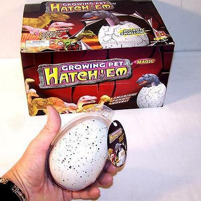 6 JUMBO DINOSAUR EGG magic dino growing eggs tricks hatch new hatching toy