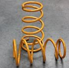 King Car and Truck Coil Springs