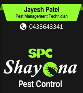 Effective Pest Control