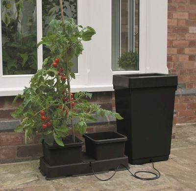 Garland Easy2grow 2 Autopot System self watering kit hydroponics easy to grow