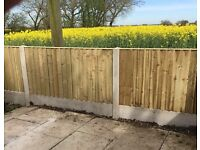☀️New Straight Top Feather Edge Fence Panels • Excellent Quality • Wooden