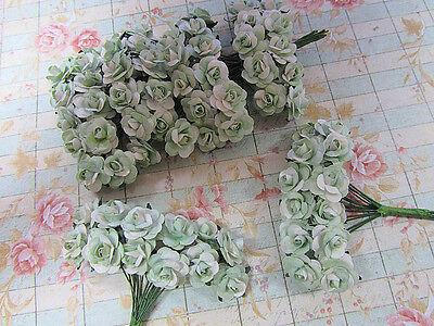 144 Mulberry Paper Rose Flower/Scrapbooking/decoration/bouquet H420-Sage/White