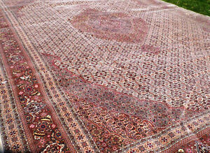 Densely Wove 12 x18 Tabriz Rug Mint Condition