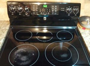 Selling Dishwasher, Fridge, and Stove: $100 - 250