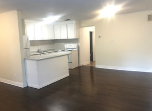 Spacious One Bedroom Apartment for Rent