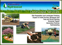 NEW LAWNS - Why Choose HYDROSEED over Sod?