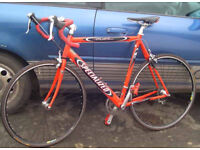 Specialized Allez Road bike 56 cm.STI gears, Superb Lightweight Bike - Carbon Forks