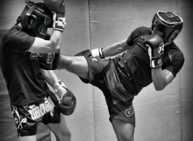Boxing/MMA training