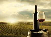 Private Wine Tours - Class and Comfort