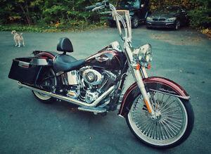 2014 Custom Harley Softail Deluxe FLSTN