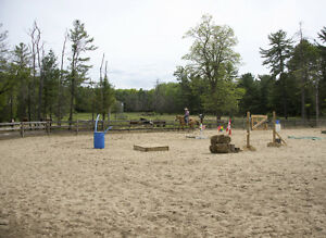 Horse Boarding Available in York Region