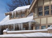 Ice/Snow Removal from Roofs (Big or Small)