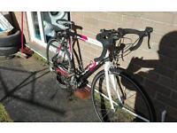 Viking Roma Road bike