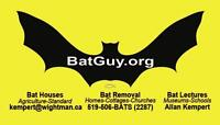 Bat Removal, Bat Houses and Guano / Insulation Removal