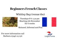 Beginners French Class / Course Starting Soon in Whitley Bay with a Qualified French Tutor