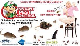 100%Guaranteed Pest Control 24/7 Mice Rat Bedbugs Cockroach Wasps Ants Flea Beetle Moth Squirrels
